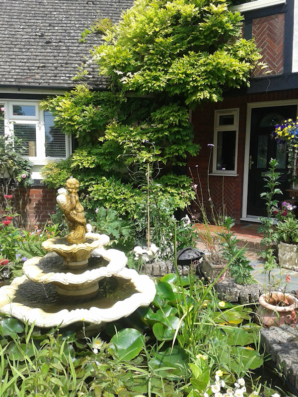 Water feature at front of house
